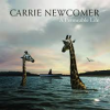 Carrie Newcomer