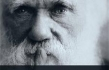 Dr. F. LaGard Smith Explains Why Over 1,000 Scientists have Signed Darwin Dissent Statement