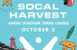 For King & Country, Phil Wickham and Greg Laurie Will Headline This Year's SoCal Harvest